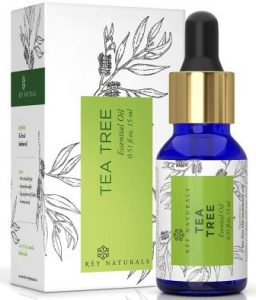 Rey Naturals best Tea Tree Essential Oil