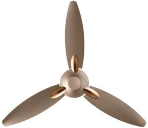 Usha Bloom Daffodil 1250mm Goodbye Dust Ceiling Fan