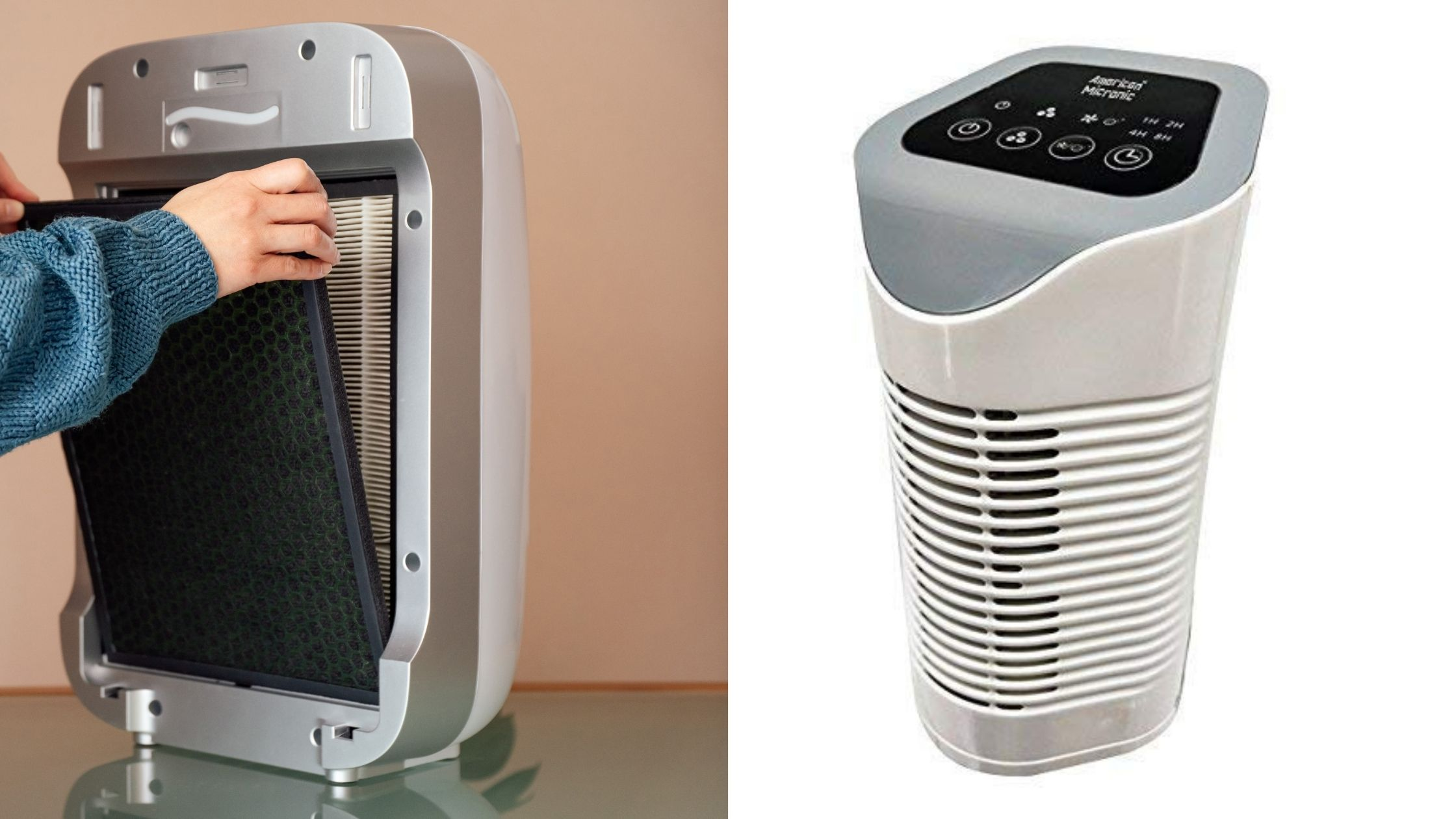 HEPA Air Purifier vs. Ionizer